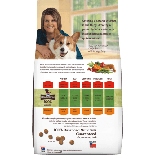 ib-canine-small-breed-natural-chicken-and-brown-rice-recipe-adult-dry